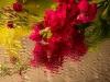 20131102-bloemen_spiegel-51