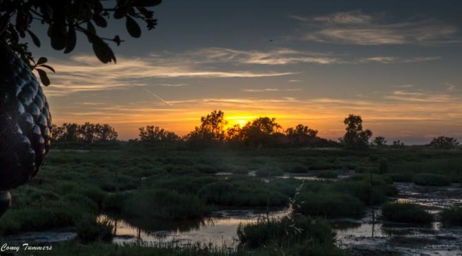 Camargue zonsondergang